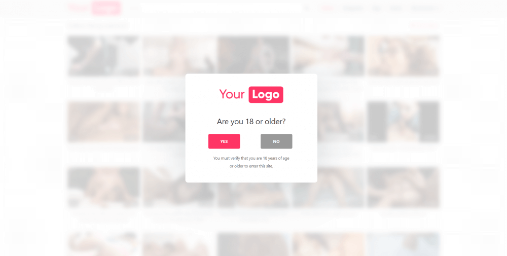 Light with logo age verification wordpress plugin