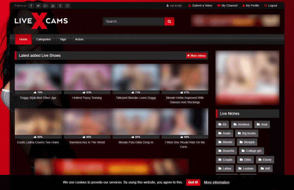 Example of Cookie Consent with RetroTube Theme - LiveXCam Niche