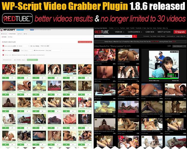 wp-script Grabber Plugin 1.8.6